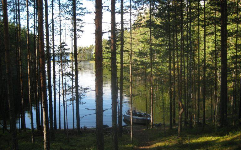 Nature tours of Nestorinranta at Puumala archipelago
